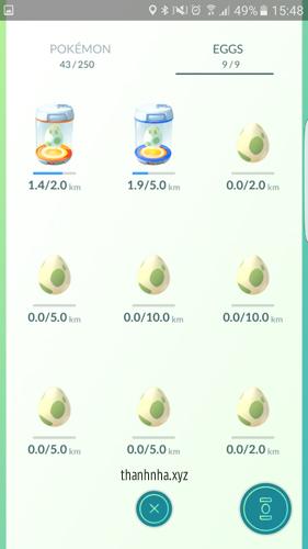 9. Trứng Pokemon